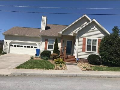 Johnson City Single Family Home For Sale: 257 Main Street Village Drive