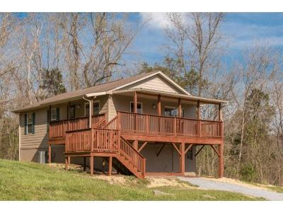 Blountville Single Family Home For Sale: 124 Highway 394