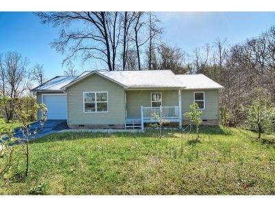 Johnson City Single Family Home For Sale: 1817 Triangle Rd