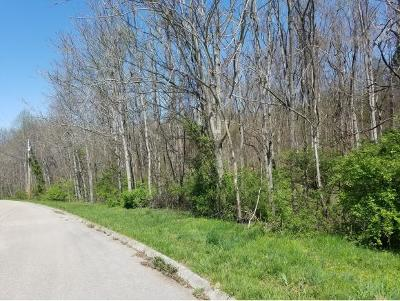 Hamblen County Residential Lots & Land For Sale: 8070 West Pointe Drive