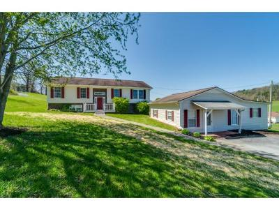 Jonesborough Single Family Home For Sale: 114 Spring Hollow Ln