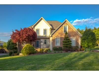 Johnson City Single Family Home For Sale: 115 Reed Circle