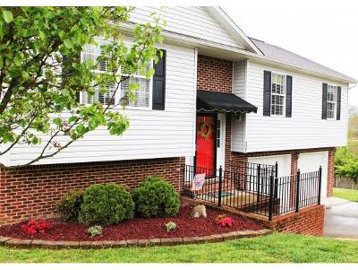 Kingsport TN Single Family Home For Sale: $173,500