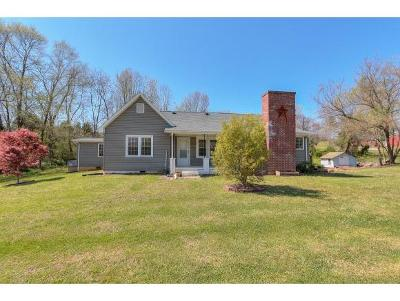 Blountville Single Family Home For Sale: 1414 Muddy Creek Rd