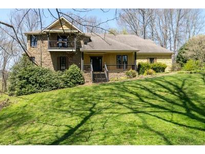 Abingdon Single Family Home For Sale: 15096 Quail Ridge Way