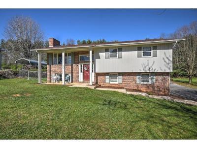 Bristol Single Family Home For Sale: 602 Lynnwood Dr