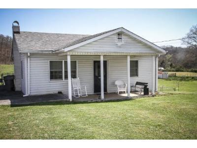 Bristol Single Family Home For Sale: 4124 Old Jonesboro Road