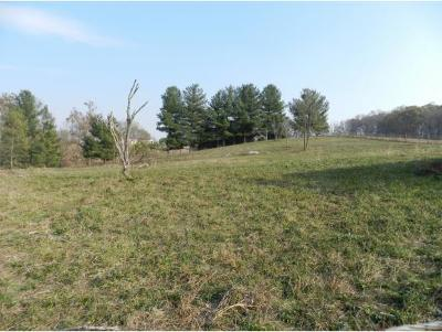 Johnson City Residential Lots & Land For Sale: Stanley Road
