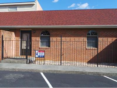 Kingsport TN Condo/Townhouse For Sale: $94,900