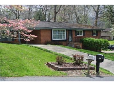 Johnson City Single Family Home For Sale: 1623 Woodridge Drive