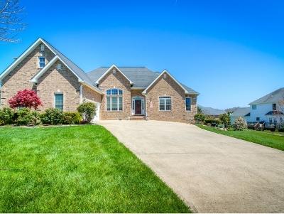 Johnson City Single Family Home For Sale: 2 Castleton Court