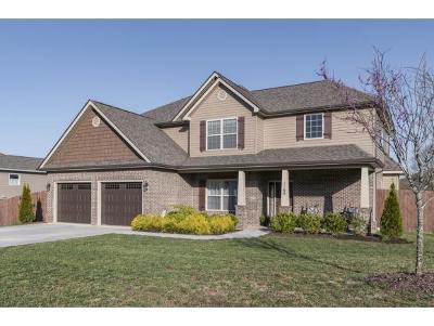 Johnson City Single Family Home For Sale: 1165 Fallen Leaf Dr.