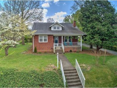 Johnson City Single Family Home For Sale: 811 West Maple Street