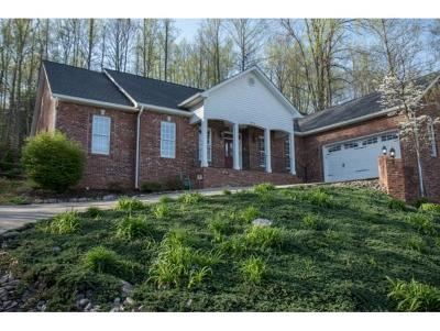 Johnson City Single Family Home For Sale: 1914 Millbrook Drive