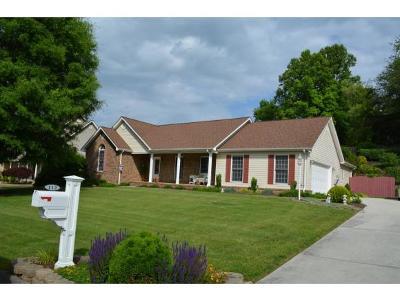 Bristol TN Single Family Home For Sale: $239,900