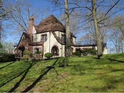 Johnson City Single Family Home For Sale: 105 Terrace Court