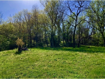 Greene County Residential Lots & Land For Sale: Locust Street