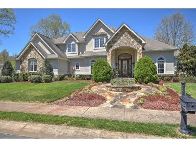 Johnson City Single Family Home For Sale: 116 Lands End