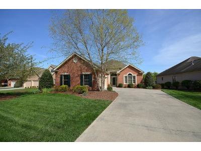 Johnson City Single Family Home For Sale: 1016 Waterbrooke Lane
