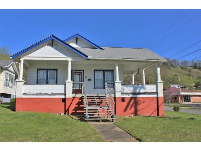 Erwin Single Family Home For Sale: 228 Alabama