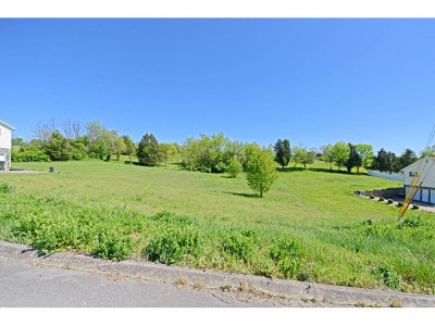Greene County Residential Lots & Land For Sale: Wayland