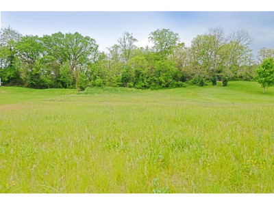 Greene County Residential Lots & Land For Sale: Wayland Drive
