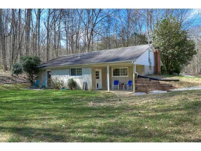 Johnson City Single Family Home For Sale: 2137 David Miller Road