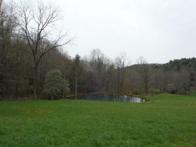 Greene County Residential Lots & Land For Sale: 2308 Viking Mtn Rd
