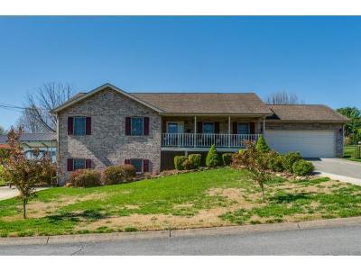 Johnson City Single Family Home For Sale: 209 Mark Drive
