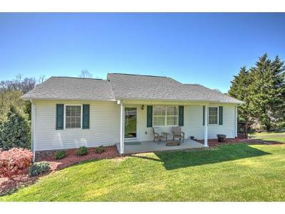 Bristol Single Family Home For Sale: 204 Paramount Dr