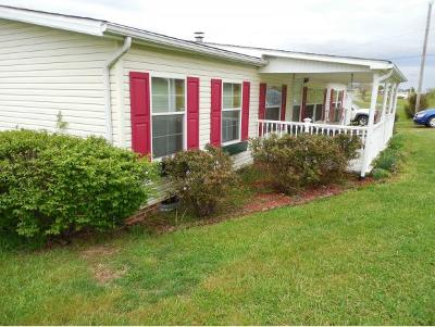 Single Family Home For Sale: 1457 Stanley Valley Road