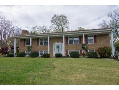 Kingsport TN Single Family Home For Sale: $182,900