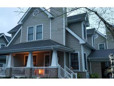 Johnson City Condo/Townhouse For Sale: 3 Charleston Ct #3