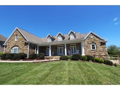Johnson City Single Family Home For Sale: 204 Strawberry Field Drive