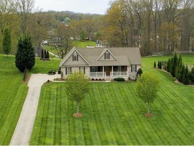 Bristol VA Single Family Home For Sale: $389,000