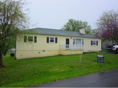 Johnson City Single Family Home For Sale: 114 Clark Drive