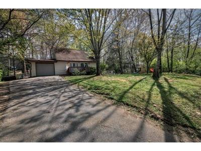 Johnson City Single Family Home For Sale: 3 Monteray Ct
