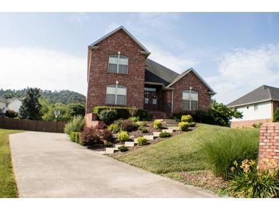Johnson City Single Family Home For Sale: 704 Galloway Drive