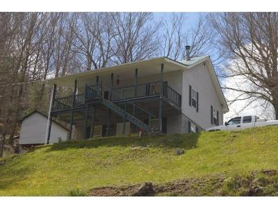 Roan Mountain Single Family Home For Sale: 1664 Hwy 143