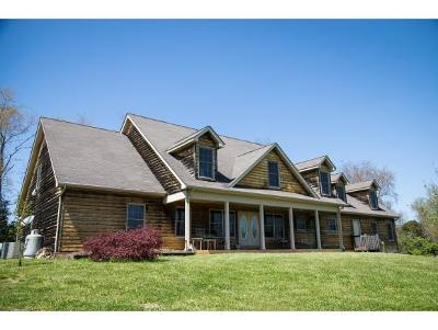 bristol Single Family Home For Sale: 3729 Highway 421
