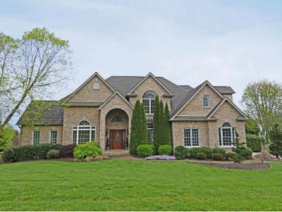 Jonesborough Single Family Home For Sale: 504 Magnolia Ridge Drive