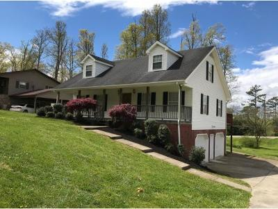 Greeneville Single Family Home For Sale: 30 Noellwood Dr