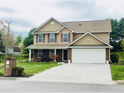 Johnson City Single Family Home For Sale: 1432 Glen Abbey