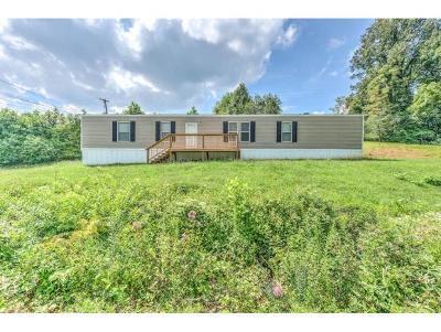 Single Family Home For Sale: 253 Bulldog Hollow