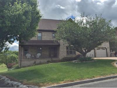 Kingsport Single Family Home For Sale: 220 Park Ridge Court