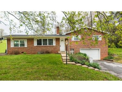 Abingdon Single Family Home For Sale: 15450 Chantilly Way #1