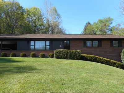 Blountville Single Family Home For Sale: 4279 Highway 11w