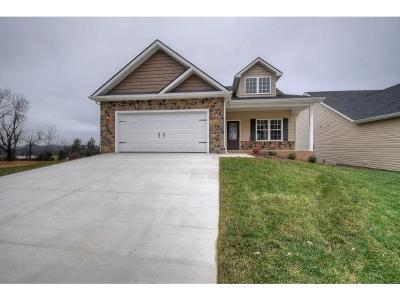 Gray Single Family Home For Sale: 292 Piper Glen