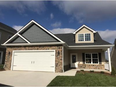 Gray Single Family Home For Sale: 248 Piper Glen