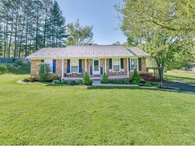 Blountville Single Family Home For Sale: 232 Clear Branch Circle
